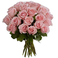 Pink Roses in Vase to